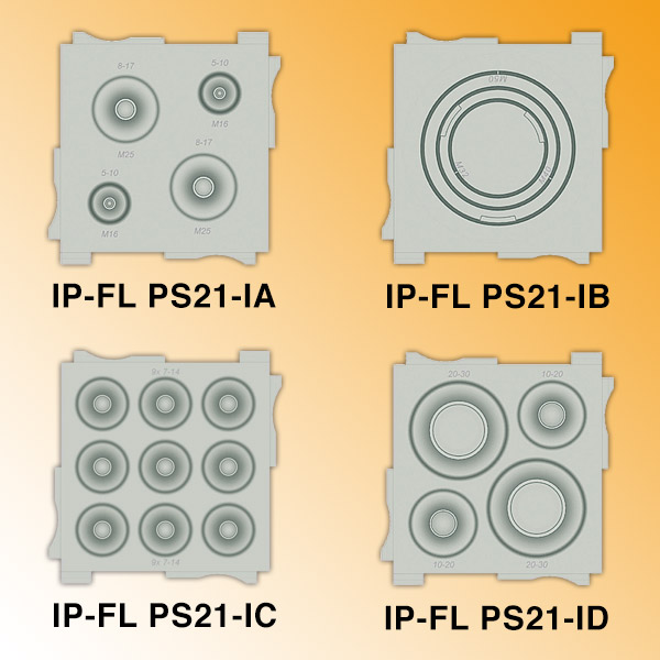 IP-FL PS21